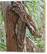 Alligator Cypress Knot Wood Print