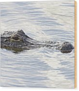 Alligator With Sky Reflections - A Closer View Wood Print