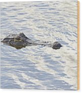 Alligator With Sky Reflections Wood Print