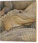 Alligators Wood Print