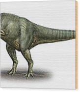 Allosaurus Fragilis, A Prehistoric Era Wood Print