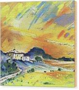 Almeria Region In Spain 03 Wood Print
