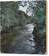 Almond River Cramond Wood Print