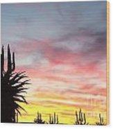 Aloe Ferox  South Africa Wood Print