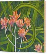 Aloe Swirl Wood Print