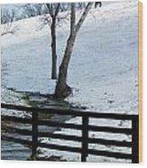 Alone On A Hill Wood Print by Paul Roger Ballard