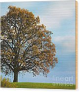 Alone On The Hill Wood Print