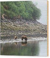 Along Geographic Bay Wood Print