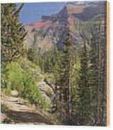 Along St. Mary's Lake Trail Wood Print