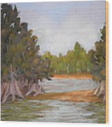 Along The Hillsboro Wood Print