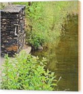 Along The Shallow Water Wood Print
