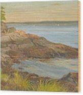 Along The Sound Shore Wood Print