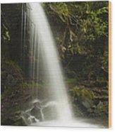 Alongside Grotto Falls Wood Print by Andrew Soundarajan