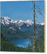 Alp See Lake In Bavaria Germany Wood Print