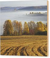 Altai Foothills Wood Print