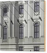 Alte Bibliothek Wood Print