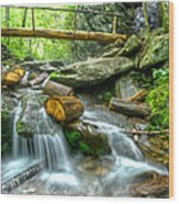Alum Cave Bluff Trail Wood Print