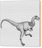 Alvarezsaurus - Dinosaur Wood Print
