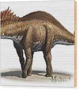 Amargasaurus Cazaui, A Prehistoric Era Wood Print