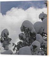 Amazing Arizona Winter Skies Wood Print