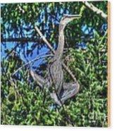 Amazing Heron Wood Print