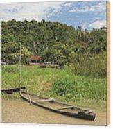 Amazon Homestead Wood Print