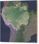 Amazon River Sources Wood Print
