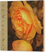 Amber Queen Rose Wood Print
