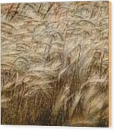 Amber Waves Of Grain Wood Print