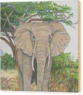 Amboseli Elephant Wood Print