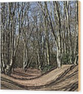Ambresbury Banks Bronze Age Fortification Wood Print
