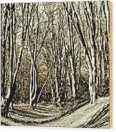 Ambresbury Banks Iron Age Fortification Wood Print