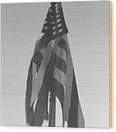 America...... Wood Print by Artist Orange
