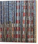 America Still Beautiful Wood Print