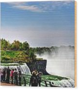 American Falls Wood Print