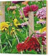 American Goldfinch In The Garden Wood Print