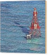 American Shoal Lighthouse Wood Print