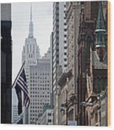 Americana Wood Print by Steven Gray