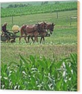 Amish At Work Wood Print by Dottie Gillespie