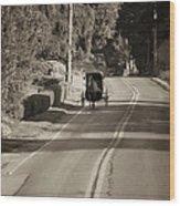 Amish Buggy - Lancaster County Pa Wood Print