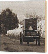 Amish Buggy And Wagon Wood Print