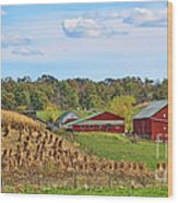 Amish Cornfield Wood Print