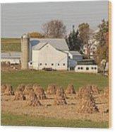 Amish Countryside Wood Print