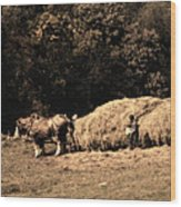 Amish Hay Wagon Wood Print by Tom Mc Nemar