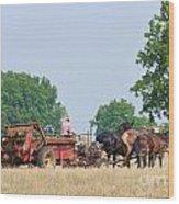 Amish Manure Spreader Wood Print