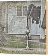 Amish Pump And Cup Wood Print