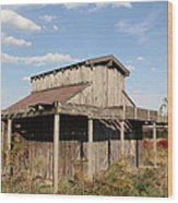Amish Shed #3 Wood Print
