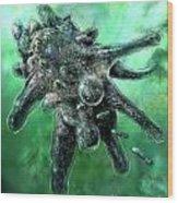 Amoeba Green Wood Print