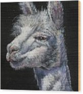 Amorous Alpaca Wood Print