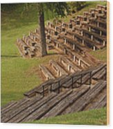 Amphitheater On The Riverwalk Wood Print